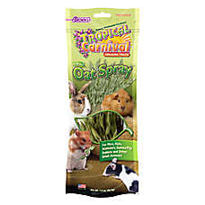 Brown's® Tropical Carnival® Natural Oat Spray Foraging Treats