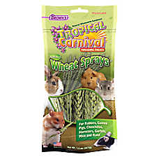 Brown's® Tropical Carnival® Wheat Sprays