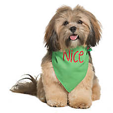 Pet Holiday™ Naughty or Nice Reversible Dog Bandana