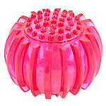 Pet Holiday™ Light-Up Ball Dog Toy - Squeaker