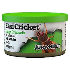 Jurassipet EasiCricket™ Large Crickets
