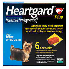 Heartgard Plus for Dogs - 6 Pack