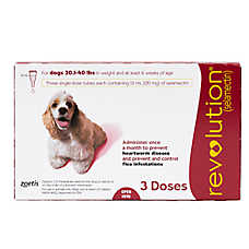 Revolution for Dogs 20.1-40 lbs