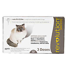 Revolution for Cats 15.1-22 lbs