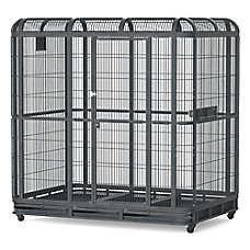 A&E Cage Company Walk-In Aviary Bird Cage
