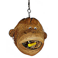 A&E Cage Company Coco Monkey Bird Toy