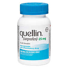 Quellin Soft Chews (carprofen)