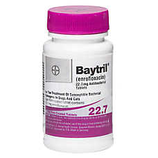 Baytril Non-Chewable Tablet