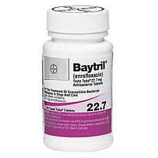 Baytril Taste Tabs Chewable Tablet