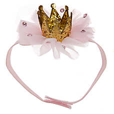 Top Paw® Puppy Tulle Crown Pet Headband