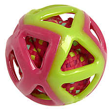 Top Paw® Ball with Rope Ball Dog Toy