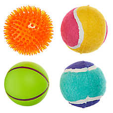 Top Paw® Mixed Ball Dog Toys - 4 Pack