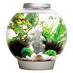 biOrb® CLASSIC 8 Gallon LED Aquarium