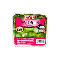 KAYTEE® Wild Berry™ Wild Bird Suet