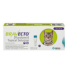 Bravecto Topical Solution for Cats