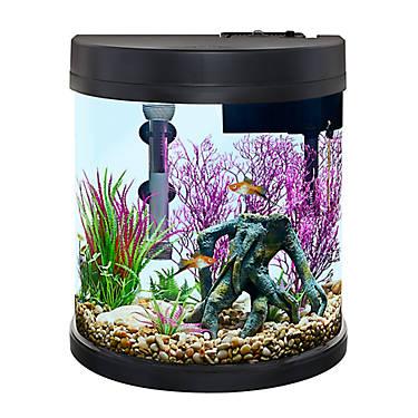 Fish & Aquariums Half-moon Aqua Oasis Glass Fish Tank