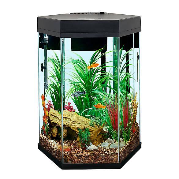 Top Fin Captivate Starter Kit Fish Starter Kits Petsmart
