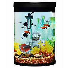 Top Fin® Mesmerize Cylinder Aquarium Starter Kit