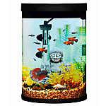 Top Fin® Mesmerize Cylinder Aquarium Starter Kit