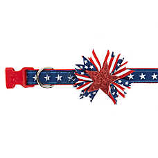 Top Paw® Americana Fireworks Dog Collar