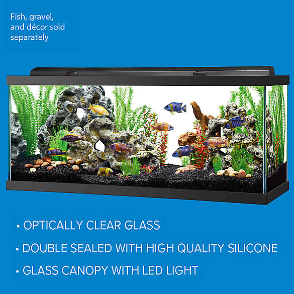 Top Fin Led Hooded Aquarium Fish Aquariums Petsmart