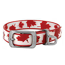Kurgo® Muck™ Maple Leaf Dog Collar - Odorless, Waterproof