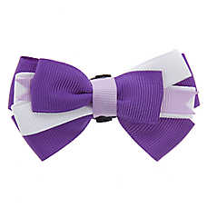 Top Paw® Bow Tie Collar Slide Accessory