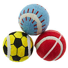 ED Ellen DeGeneres Sport Tennis Balls - 3 Pack