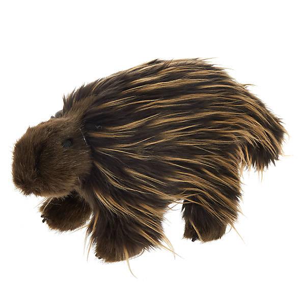 Toys Quot R Quot Us 174 Pets Porcupine Dog Toy Plush Squeaker Dog