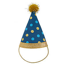 Top Paw® Birthday Pet Hat
