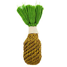Top Paw® Pineapple Rope + Chew Bone Dog Toy