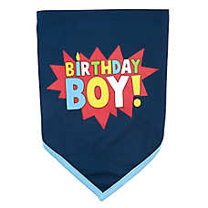 "Top Paw® ""Birthday Boy"" Pet Bandana"
