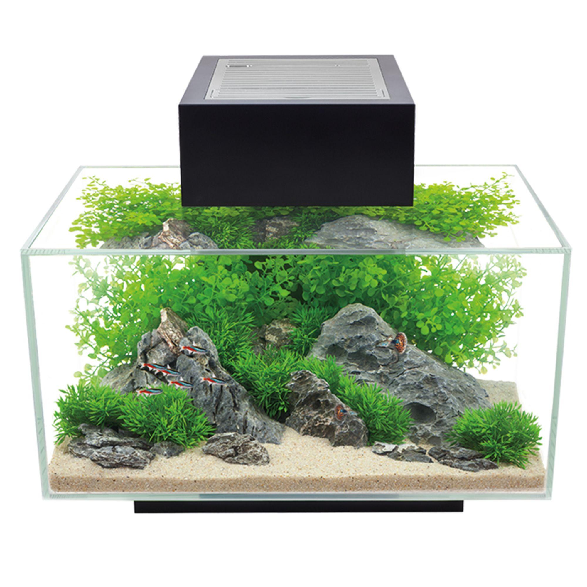 Fluval Edge Aquarium Kit 6 Gallon