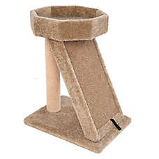 Whisker City® Cat Perch & Double Wide Scratcher