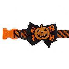 Thrills & Chills™ Halloween Pumpkin Bow Tie Dog Collar