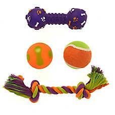 Thrills & Chills™ Halloween Spooky Fun Dog Toys - 4 Pack