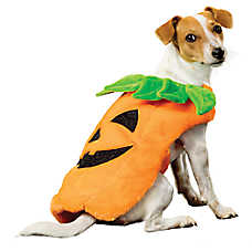 Thrills u0026 Chillsu0026trade; Halloween Pumpkin Pet Costume  sc 1 st  PetSmart & Dog Costumes: Shop Small u0026 Large Dog Costumes | PetSmart