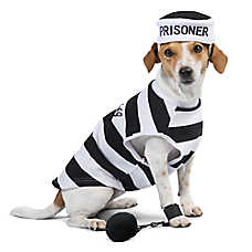 Thrills & Chills™ Prisoner Halloween Pet Costume