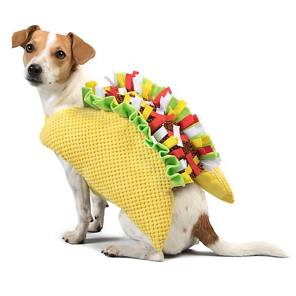 10 Doggone Delicious Halloween Costumes | EatStreet Blog |Taco Dog Halloween Costume Pattern