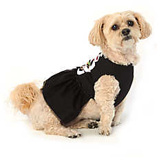 Thrills & Chills™ Halloween Skeleton Pet Dress