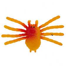 Thrills & Chills™ Halloween Spooky Spider Cat Toy