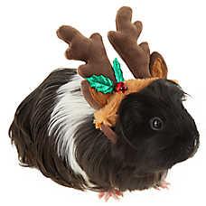 Merry & Bright™ Reindeer Antler Small Pet Hat