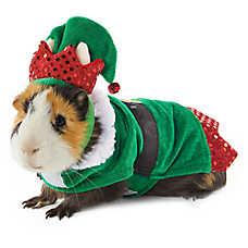 Merry & Bright™ Elf Small Pet Costume