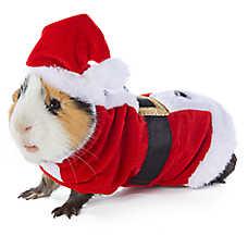 Merry & Bright™ Santa Small Pet Costume