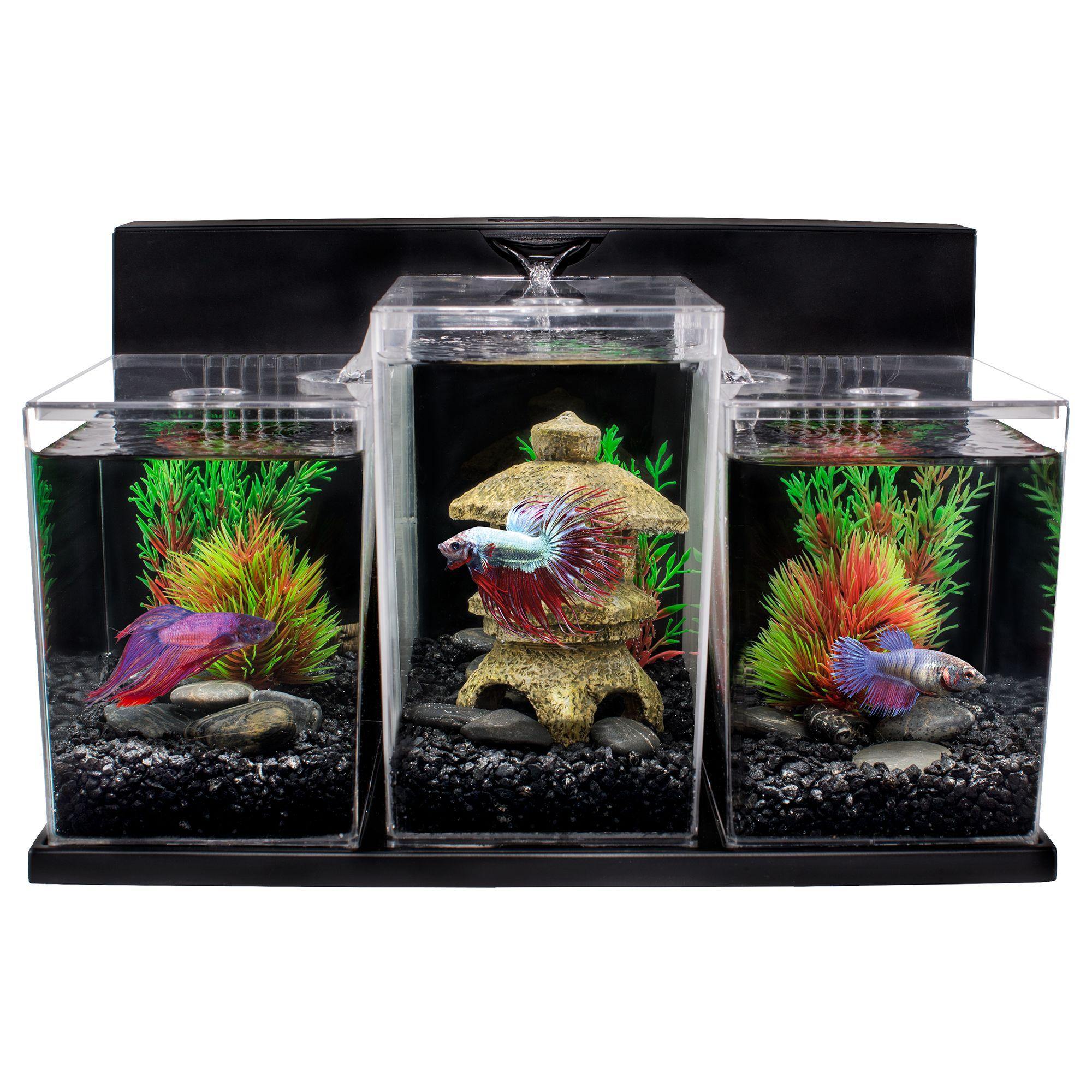 Top Fin Bettaflo Betta Aquarium Fish Aquariums Petsmart