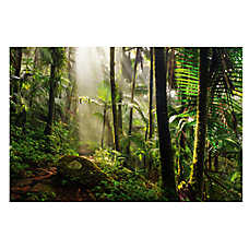 All Living Things® Tropical Rainforest Reptile Cling Background