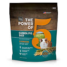 All Living Things® The Power of 5™ Guinea Pig Diet