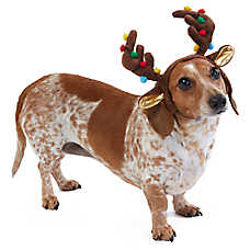 Merry & Bright™ Holiday Reindeer Pet Antlers