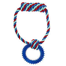 Top Paw® Rope Handle Ring Dog Toy