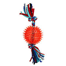 Top Paw® Ball & Rope Dog Toy